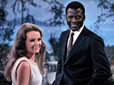 Guess Who's Coming To Dinner, Katharine Houghton, Sidney Poitier, 1967 Photo