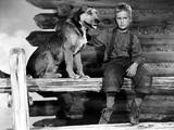 Shane, Brandon De Wilde, 1953 Photo