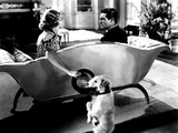 The Awful Truth, Irene Dunne, Asta, Cary Grant, 1937 Photo