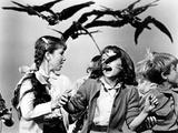 The Birds, Veronica Cartwright, 1963 Photo