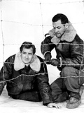 Stalag 17, Don Taylor, William Holden, 1953 Print