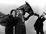 A Day At The Races, Chico Marx, Harpo Marx, Groucho Marx, 1937 Julisteet