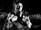 Cape Fear, Robert Mitchum, Gregory Peck, 1962 Photo