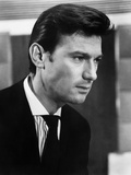 Darling, Laurence Harvey, 1965 Photo