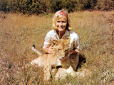 Born Free, Virginia McKenna With Elsa, 1966 Photo