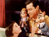 Lili, Leslie Caron, Mel Ferrer, 1953 Photo