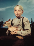 The Yearling, Claude Jarman, Jr., 1946 Photo