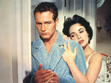 Cat On A Hot Tin Roof, Paul Newman, Elizabeth Taylor, 1958 Posters