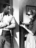 A Patch Of Blue, Sidney Poitier, Elizabeth Hartman, 1965 Photo