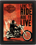 Harley Davidson (Live To Ride) Prints