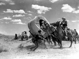 Fort Apache, John Wayne, 1948 - Resim