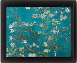 Van Gogh (Apple Blossom) Posters