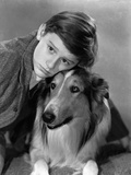 Lassie Come Home, Roddy McDowall, Lassie, 1943 Photographie