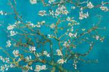 Vincent Van Gogh - Blühende Mandelbaumzweige Plakater