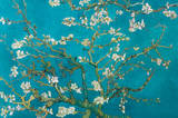 Vincent Van Gogh - Blühende Mandelbaumzweige Poster