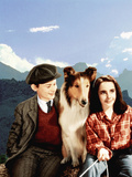 Lassie Come Home, Roddy McDowall, Lassie, Elizabeth Taylor, 1943 Photo