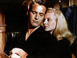 Sweet Bird Of Youth, Paul Newman, Shirley Knight, 1962 Photo
