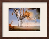 The Temptation of St. Anthony, c.1946 Poster by Salvador Dalí