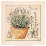 Herbes de Provence II Art by Laurence David