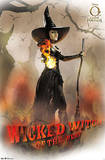 Oz the Great and Powerful - Wicked Witch Posters