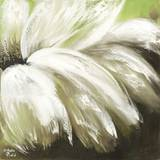 Green Daisy Prints by Nathalie Poulin