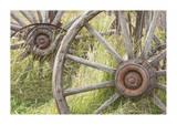 Wagon Wheels Gicléedruk van Donald Paulson
