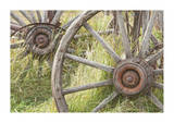 Wagon Wheels Giclee Print by Donald Paulson