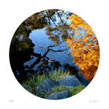 Serenity Reflection 1 Giclee Print by Joy Doherty