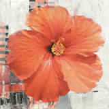Hibiscus II Poster by Enrico Sestillo
