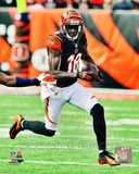 A.J. Green 2012 Action Photo