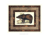 Rustic Bear Prints by  Vision Studio