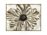 Fresco Flowerhead I Poster by Nancy Slocum