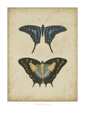 Antique Butterfly Pair III Giclee Print by Vision Studio