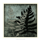 Illuminated Ferns I Posters by Megan Meagher