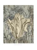 Tulip and Wildflowers V Plakater af Jennifer Goldberger
