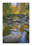 Ashland Creek In Fall Giclee Print by Donald Paulson