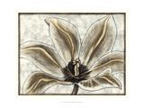 Fresco Flowerhead III Print by Nancy Slocum