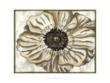 Fresco Flowerhead II Prints by Nancy Slocum