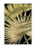 Ethan Harper - Rustic Tropical Leaves I - Poster