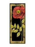 Floral Inset IV Prints by Jennifer Goldberger