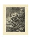 Vintage Roe Deer I Giclee Print by Specht Friedrich