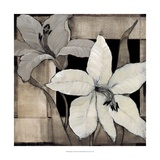 Dramatic Lily Grid II Poster af Tim O'toole