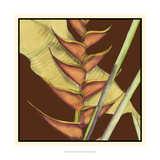 Striking Tropical III Prints by Jennifer Goldberger