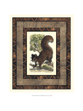 Rustic Squirrel Giclee Print by Vision Studio