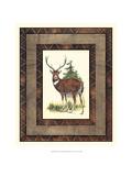 Rustic Deer Posters by  Vision Studio