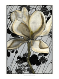 Patterned Magnolia I Prints by Jennifer Goldberger