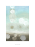 Dewdrops II Giclee Print by Jennifer Goldberger
