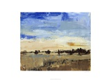 Open Range II Giclee Print by Tim O&#39;toole