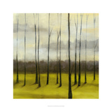 Sunlit Treeline I Prints by Jennifer Goldberger