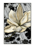 Patterned Magnolia II Poster by Jennifer Goldberger